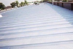 Rustproof And Waterproof Metal Roof Coating
