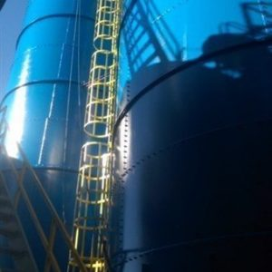 TMI Paints Two Livestock Silos In Dallas