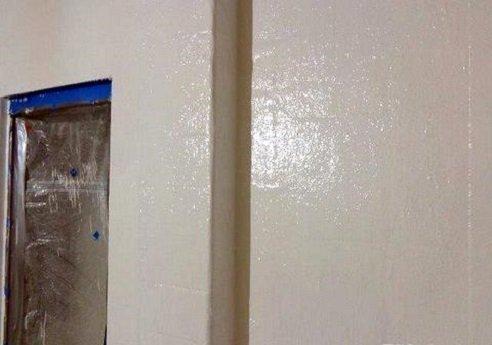 FIBERLIFE For Coating Concrete Block Walls